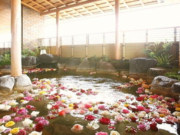 宝塚市街の夜景と、癒しのバラ風呂2205815