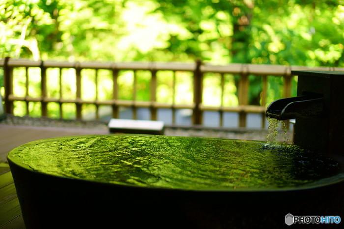緑溢れる箱根で贅沢なひとときを1207211